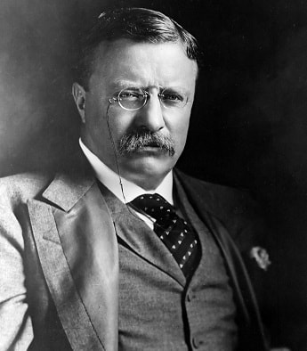 Photo of Teddy Roosevelt